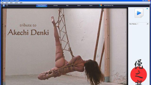 Tribute to Akechi Denki - video
