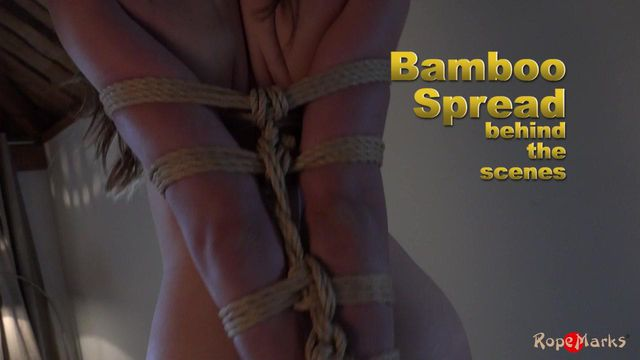 Bamboo Spread - video (bts), part 3 of 3