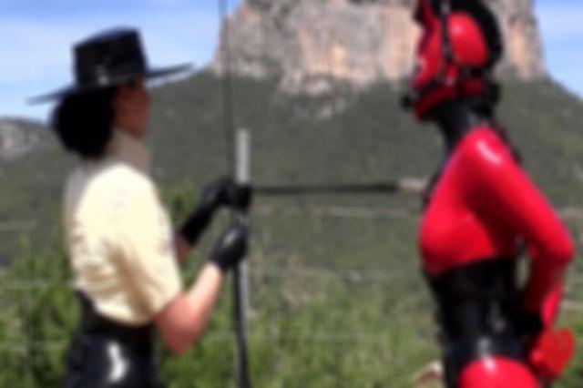 Pony Training: the video