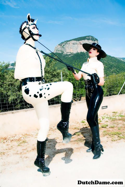 Pony Training