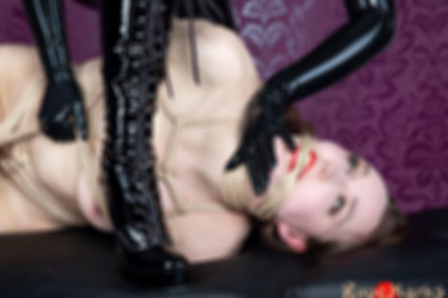 Dutch Dame dominated by Sinteque