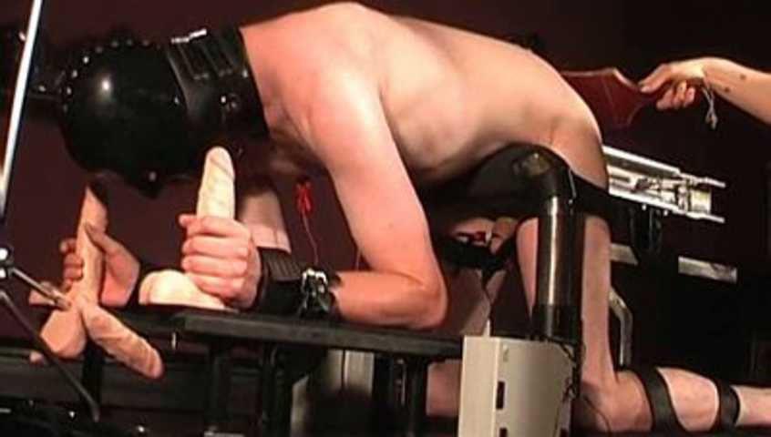 Lady Alexa - Fickmaschine und Strom