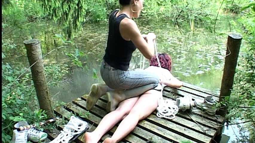 Aquatormentis