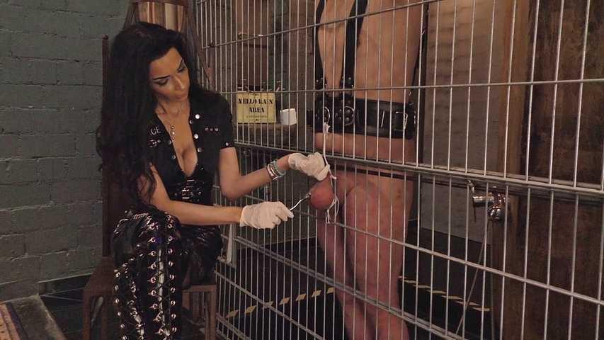 Mistress Zita - The Prisoner