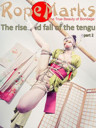 The rise and fall of the tengu, part 2
