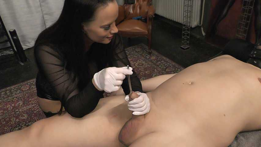 Comtesse la Moet -  My Fun your Pain Part1