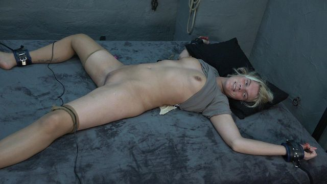 Lissy tied up on the bed