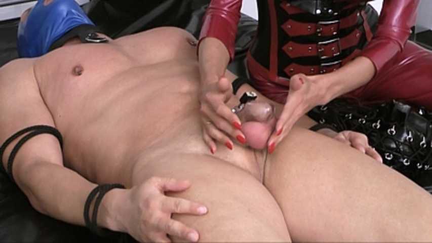 Mistress Zita - Small Penis humil**tion
