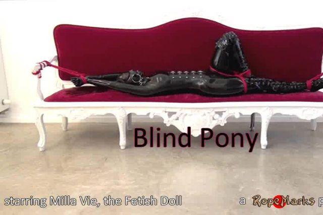 Blind Pony - Video
